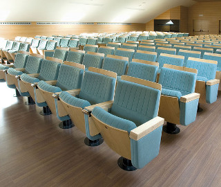 Permanently Seated Areas | Auditorium & Arena Seating